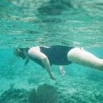 Snorkel Akumal