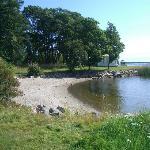 Small beaches/bays at Engeltofta
