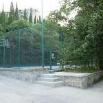 Tennisplatz - Court