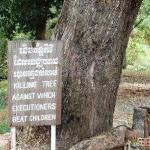 The Killing Fields. This is the tree that the Khmer Rouge used to beat children to death.