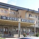 Photo de Hotel Meleiros