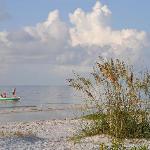 Beach Next to Colony