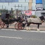 very nice horse n carrage