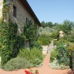 Photo of Terre di Baccio