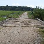 Bridge to Botany Beach