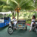 Local resort transportation ask and go