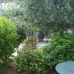Le jardin intérieur devant la terrasse