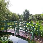 Bennets Water Gardens - peaceful, elegant and great food