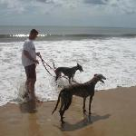 The Greys loved the beach.