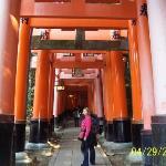 The Fushimi-Inari Shrine!!  Anyone who saw Memoirs of a Geisha knows that the narrator ran throu