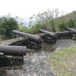 Hamilton Fort