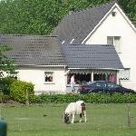 Foto de Hotel Het Bloemenhof