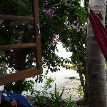 Blick aus dem Strandbungalow