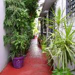 Walkway in to Coqui del Mar