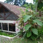 villa; cadre de verdure et baies vitrées