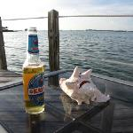 Kalik and Conch on the Dock