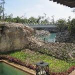 plunge pool in lagoon suite