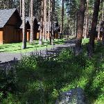 Cabins at the Five Pine Lodge