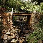 Rivulets, waterfalls and bridges make walks fun.