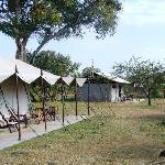 two of the family tents