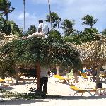Abri sur la plage et le complexe.  Il y en a beaucoup et les chaises ne manquent pas.