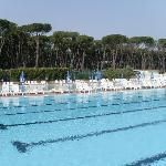 photo de la piscine prise le matin, c'est pas le rêve ça?