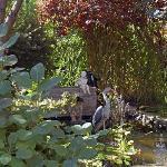 Garden at Britaly