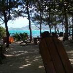 Beach Bar at its finest