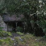 Peppers Cradle Mountain Lodge ภาพถ่าย