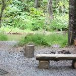 Fire pit and creek at Spruce Cabin