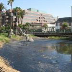 The La Brea Tar Pits.  It looked gross, smelled like fresh tar on a rooftop, and was still bubbl