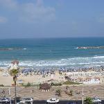 Photo de Hotel Prima Tel-Aviv