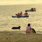 Auf  der Hund darf mal schwimmen
