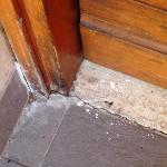 Residence Sole e Maremma: polvere contro insetti