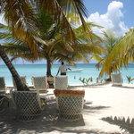 Saona Island, a trip you should make!
