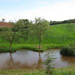 View of farm