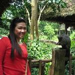 singapore zoo - singapore '06
