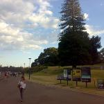 The Royal Botanic Garden ภาพถ่าย