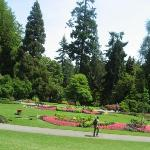Pavilion Rose Garden at Stanley Park