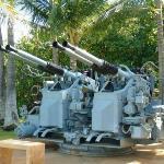 Those are some big guns.