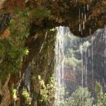 Zion NP - weeping Rock