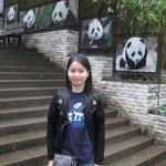 Chengdu Panda Habitat