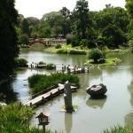 Jardim Japonês - Autora: Paola Borghesi