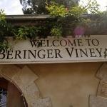 Beringer Vineyards ภาพถ่าย