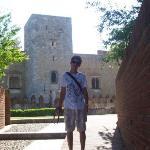 Palais des Rois de Majorque (Palace of the Kings of Majorca) ภาพถ่าย