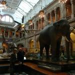 Kelvingrove Art Gallery à Glasgow. Un musée immense où on trouvait aussi bien une réserve d