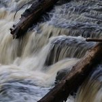 Tahquamenon Falls State Park Photo