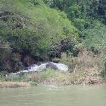 Mag-aso Falls ภาพถ่าย