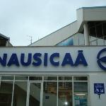 Petit détour par Boulogne-sur-Mer pour visiter l'aquarium Nausicaä