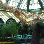 Bellagio Conservatory & Botanical Garden ภาพถ่าย